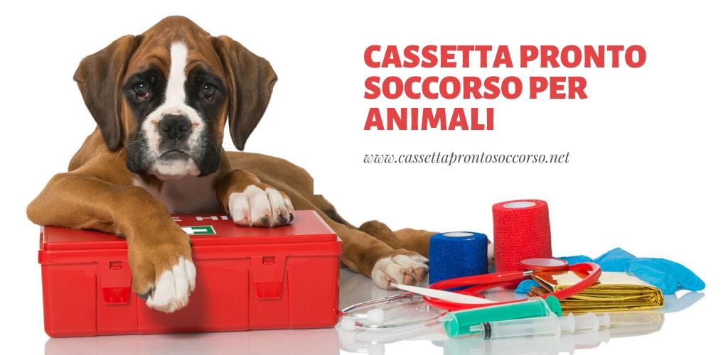 Cassetta pronto soccorso per animali